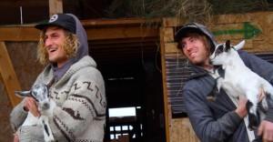 Sam and Jazzy enjoying the farm.