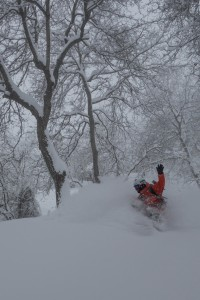 Mike Handford, Arslanbob Walnut forest, PC TYRONE LOWE