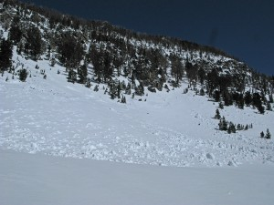 Slab avalanche casued by the first big warm after a heavy April storm